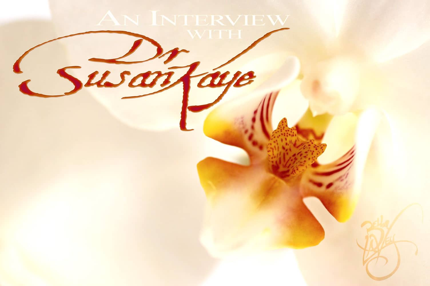 Interview with Dr Susan Kaye